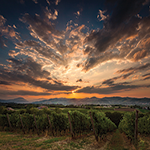 VY_Italy_Tuscany_sunset