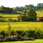 VY_France_Bordeaux