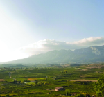 VY_Spain_Rioja_mountains