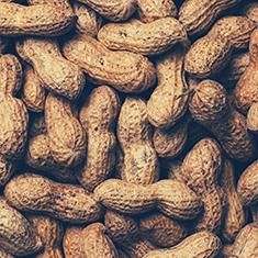 Peanut Noir_Blog