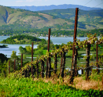 VY_California_LakeCounty